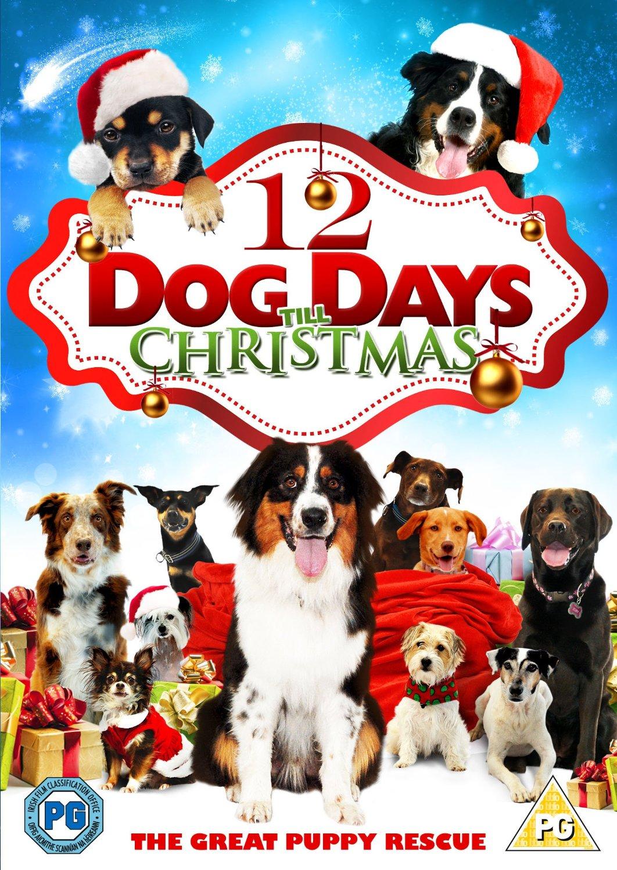 Days Till Christmas Uk.12 Dog Days Till Christmas Uk Import Dvd