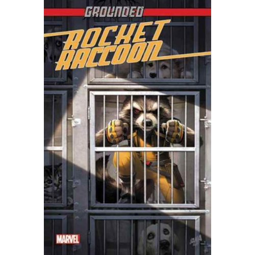 Rocket Raccoon: Grounded (BOK)