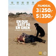 Produktbilde for En Due Satt På En Gren Og Funderte Over Tilværelsen (DVD)