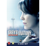 Grey's Anatomy - Sesong 11 (DVD)