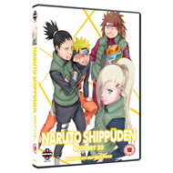 Naruto Shippuden - Vol. 22 (UK-import) (DVD)