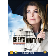 Grey's Anatomy - Sesong 12 (DVD)