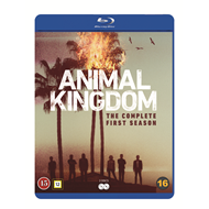 Animal Kingdom - Sesong 1 (BLU-RAY)