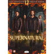 Supernatural - Sesong 12 (DVD)