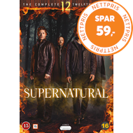 Produktbilde for Supernatural - Sesong 12 (DVD)