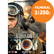 Produktbilde for Squadron 303 (DVD)