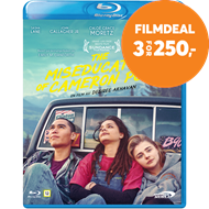 Produktbilde for The Miseducation Of Cameron Post (BLU-RAY)