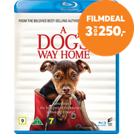 Produktbilde for A Dog's Way Home (BLU-RAY)