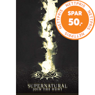 Supernatural - Sesong 14 (DVD)