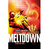 Meltdown (Special Agents, Book 6) (BOK)