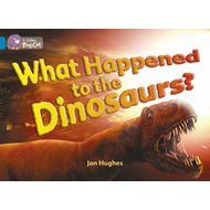 What Happened to the Dinosaurs?