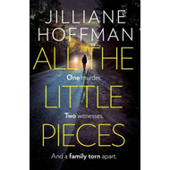 All the Little Pieces (BOK)