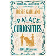 Palace of Curiosities (BOK)