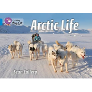 Arctic Life: Blue/Band 04 (BOK)