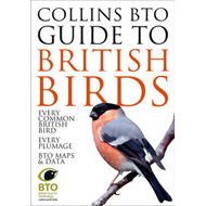 Collins BTO Guide to British Birds (BOK)