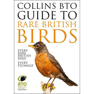 Collins BTO Guide to Rare British Birds (BOK)