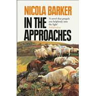 In the Approaches (BOK)