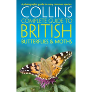 British Butterflies and Moths (BOK)