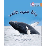 Journey of Humpback Whales (BOK)