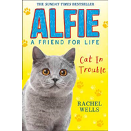 Alfie Cat In Trouble (BOK)