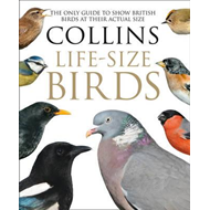 Collins Life-Size Birds (BOK)