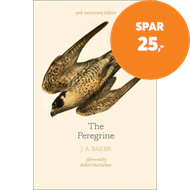 Produktbilde for Peregrine: 50th Anniversary Edition (BOK)