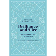 Brilliance and Fire (BOK)