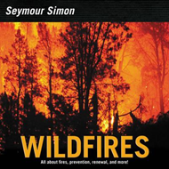 Wildfires (BOK)