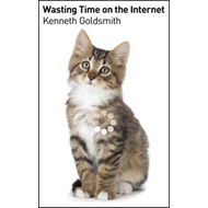 Wasting Time on the Internet (BOK)