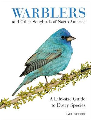 Warblers and Other Songbirds of North America (BOK)