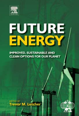 Future Energy: Improved, Sustainable and Clean Options for Our Planet (BOK)