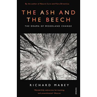 Ash and the Beech (BOK)