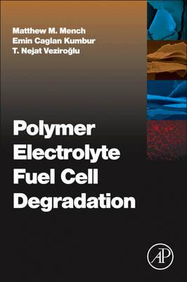 Polymer Electrolyte Fuel Cell Degradation (BOK)