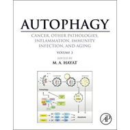 Autophagy: Cancer, Other Pathologies, Inflammation, Immunity (BOK)