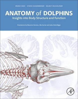 Anatomy of Dolphins (BOK)
