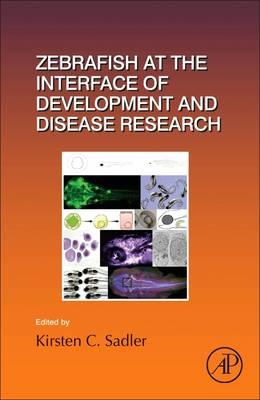 Zebrafish at the Interface of Development and Disease Resear (BOK)