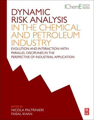 Dynamic Risk Analysis in the Chemical and Petroleum Industry (BOK)