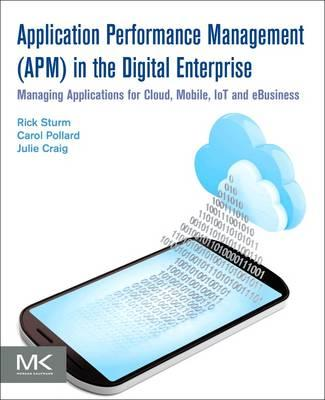 Application Performance Management (APM) in the Digital Ente (BOK)