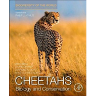 Cheetahs: Biology and Conservation (BOK)