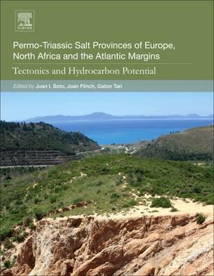 Permo-Triassic Salt Provinces of Europe, North Africa and th (BOK)