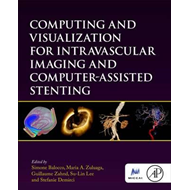 Computing and Visualization for Intravascular Imaging and Co (BOK)