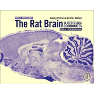 Rat Brain in Stereotaxic Coordinates: Compact (BOK)