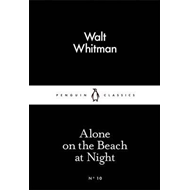 On the Beach at Night Alone (BOK)
