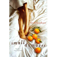 Small Damages (BOK)