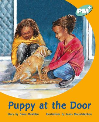 Puppy at the Door PM PLUS Level 18 Turquoise (BOK)