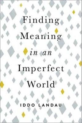 Finding Meaning in an Imperfect World (BOK)