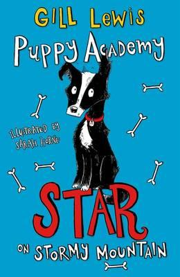 Puppy Academy: Star on Stormy Mountain (BOK)