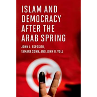 Islam and Democracy after the Arab Spring (BOK)