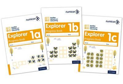 Numicon: Number, Pattern and Calculating 1 Explorer Progress (BOK)