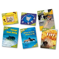 Oxford Reading Tree: Stage 7: Fireflies: Pack (6 Books, 1 of (BOK)